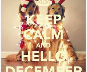december and keep calm image