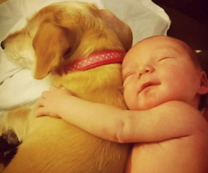 dog, kid, and little image