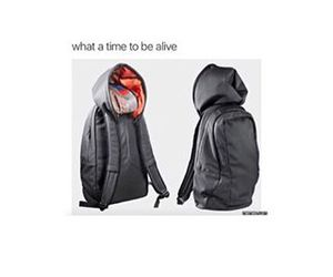 bags, funny, and lol image