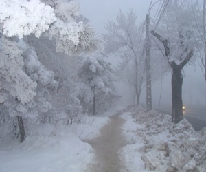 winter, snow, and pale image