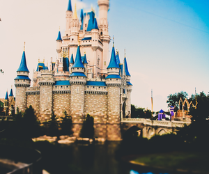 disney, place, and travel image