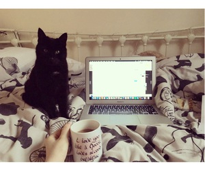 apple, bed, and black image