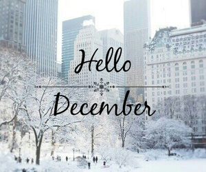 new york, snow, and hello december image
