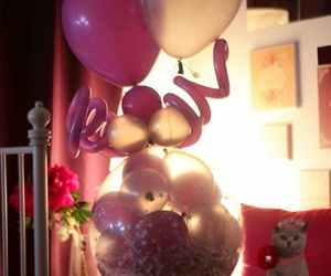 balloons, cat, and pink image