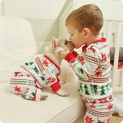 christmas, dog, and baby image