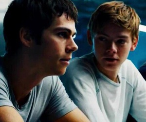 the maze runner, newt, and newtmas image