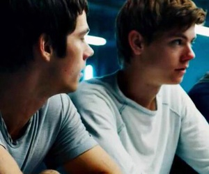the maze runner, actor, and adorable image
