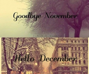december, winter, and november image