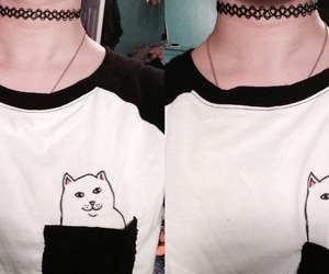 cat, funny tshirt, and kitty image