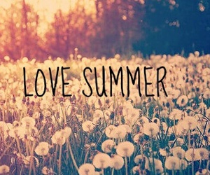 phrases, summer, and love image