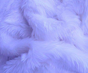 white, fur, and soft image