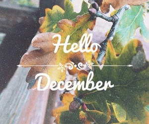 december, hello, and picture image