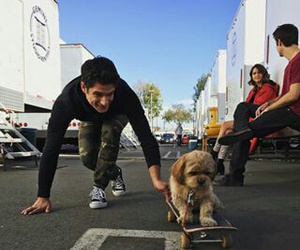 teen wolf, tyler posey, and dog image