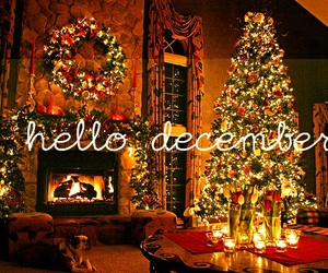 christmas tree, snow, and hello december image