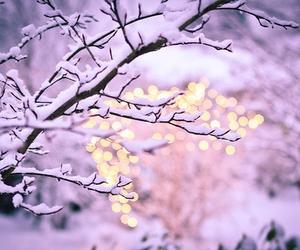 christmas, pretty, and snow image
