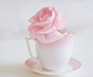 pale, pink, and teacup image