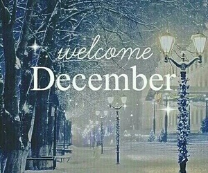 cold days, hello, and december image