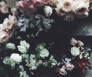 beautiful, floral, and flowers image