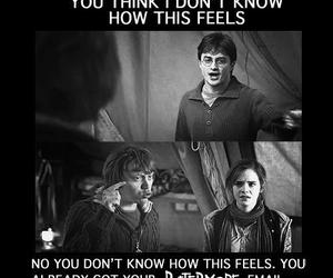 harry potter and pottermore image