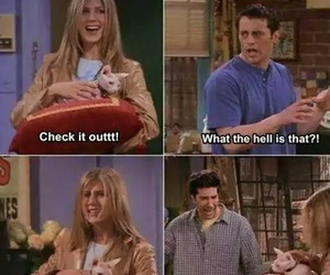 funny, rachel, and Joey image