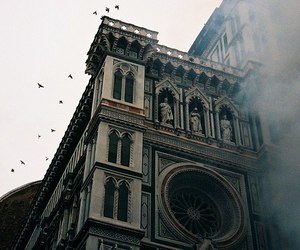 bird, architecture, and photography image