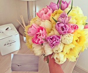 flowers, pink, and yellow image