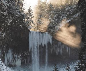 forest, snow, and waterfall image