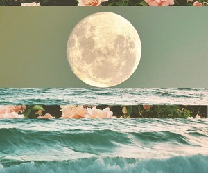 moon, flowers, and sea image