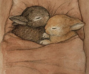 bunny and rabbit image