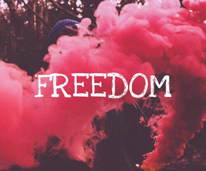 freedom and wallpaper image