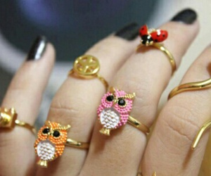 owl, rings, and accessories image