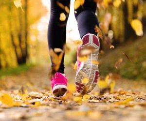 run, autumn, and running image