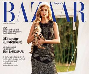 bazaar, beautiful, and cover image