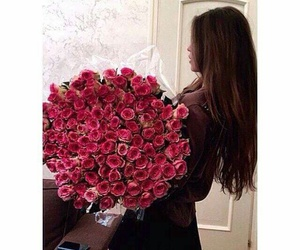 pink, roses, and girl's dream image