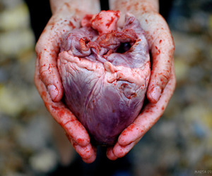 heart, blood, and hands image