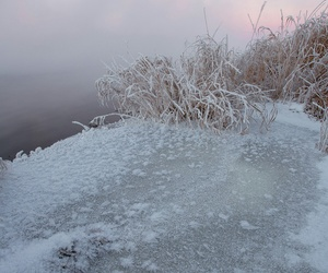 cold, ice, and nature image
