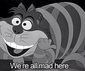 alice in wonderland, cat, and mad image