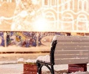 lights and snow image