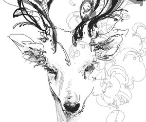 deer, drawing, and animal image