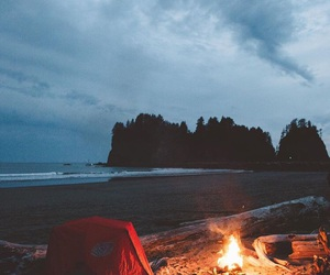 fire, sea, and trees image