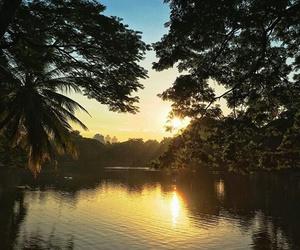 green, nature, and lake image