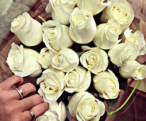 flowers, roses, and fashion image