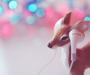 music, animal, and lights image