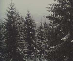 cold, cosy, and mountain image