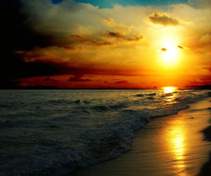 artistic, sunset, and beach image