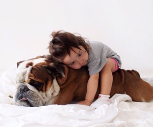 best friends, bulldog, and dog image