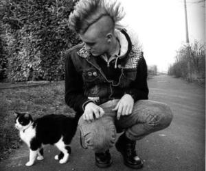 cat and punk image
