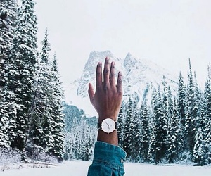 christmas, forest, and watch image