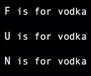 vodka, fun, and quote image