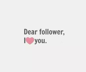 love, followers, and follower image